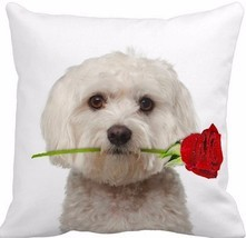 Stylish Maltese With A Rose 16-Inch Accent Throw Pillow Bedroom Decor New - €22,21 EUR