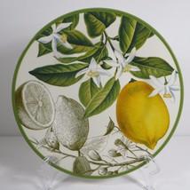 "Williams Sonoma Botanical Citrus Fruit Green 1 Salad Plate Lemon 9"" NWOT 481728 - $42.99"