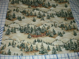 "Thimbleberries Christmas Street 2007 RJR Fabrics 28"" Long Remnant OOP Sc... - $19.95"