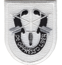 """2"""" Army Special Forces Training Embroidered Patch - $17.09"""