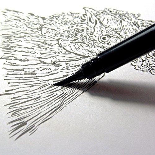 Pentel Arts Pocket Brush Pen, Includes 2 Black Ink Refills GFKP3BPA