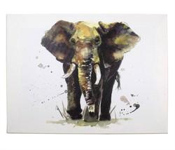 Wild Elefante Sarah Stokes Blanco Gris Decoración Pared Imagen UNFRAMED30X40CM - $8.45