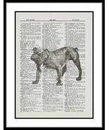 English Bulldog Animal Dictionary Art Print Mixed Media Wall Decor anima... - $10.99