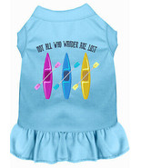 Not All Who Wander Embroidered Dog Dress Baby Blue 4x - $26.85
