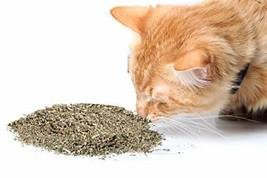 Cat Crack Catnip, Premium Blend Safe for Cats, Infused with Maximum Pote... - $31.03
