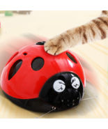 Catch Me If You Can Super Fun Cat Toy, AAA Battery-Operated Pet Toy - $19.79+