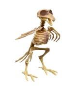 Halloween Plastic Bird Skeleton Decorations, 7.25 in. w - $6.99