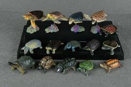 15pcs Set Land Sea Turtle Reptile Figure Model Japan Takara Tomy Encyclo... - £15.20 GBP