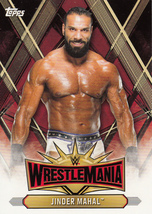 Jinder Mahal 2019 Topps WWE Road To Wrestlemania Roster Card #WM-22 - $0.99
