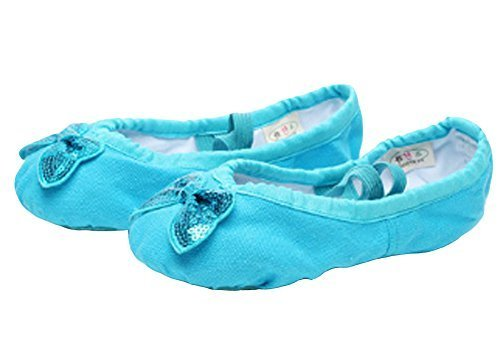 PANDA SUPERSTORE Dance Class Ballet Shoes/Dance Shoes for Pretty Girl (22CM Leng