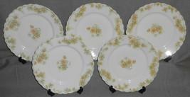 Haviland Porcelain THE COUNTESS PATTERN Set (5) Luncheon Plates LIMOGES ... - $79.19