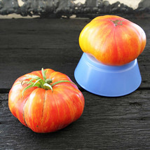 SHIP FROM US ORGANIC MR. STRIPEY TOMATO ~50 SEEDS - HEIRLOOM  TM11 - $22.32