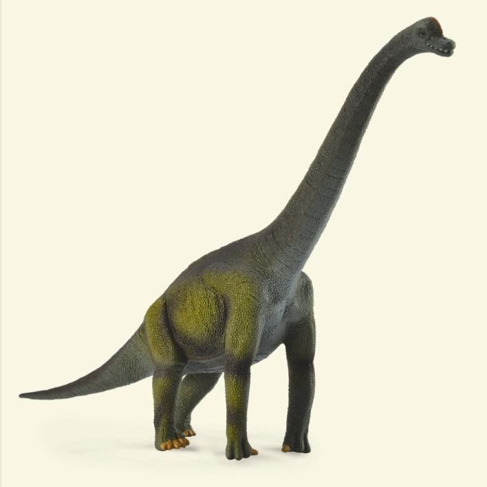 Primary image for Breyer CollectA 88121 Brachiosaurus exceptional realistic detail<>