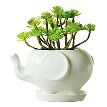 Youfui Cute Succulent Planter Animal Shaped Flower Pot Decor for Home Of... - $10.56