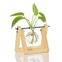 Ivolador Desktop Glass Planter Bulb Vase with Retro Solid Wooden Stand a... - $18.00