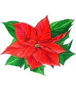 Poinsettia Red Star Flower Christmas Holiday Vinyl Decal Decor Sticker A... - $5.99+