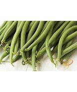 """COOL BEANS n SPROUTS"" Brand, Top Crop Bean Seeds. 6 Ounce A Garden Favo... - $6.92"