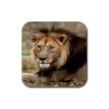 Lion Animal (Square) Rubber Coaster - $2.99