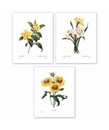 Botanical Art, 8x10 Yellow Flower Prints, Redoute French Home Wall Decor... - $13.42
