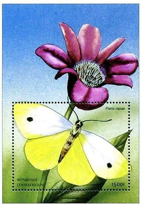 Primary image for CENTRAL AFRICA 2001 African BUTTERFLIES  S/S SC#1402 ** MNH CV$7.00 INSECTS