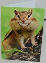 Shoebox ZZS 1255 Smiling Chipmunk Congrat Greeting Card with Blue Envelope Pkg 4 image 2