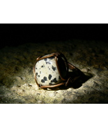 Haunted Were-Leopard Living Entity Unique Antique Ring Leopard Miracle by izida - $222.00