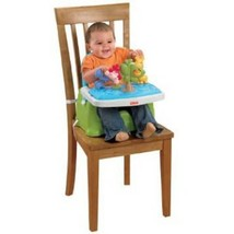 Fisher-Price Discover 'n Grow Busy Baby Booster Seat - $51.23