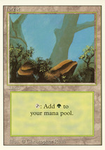 Magic: The Gathering 3rd Edition - Forest (B) - $0.25