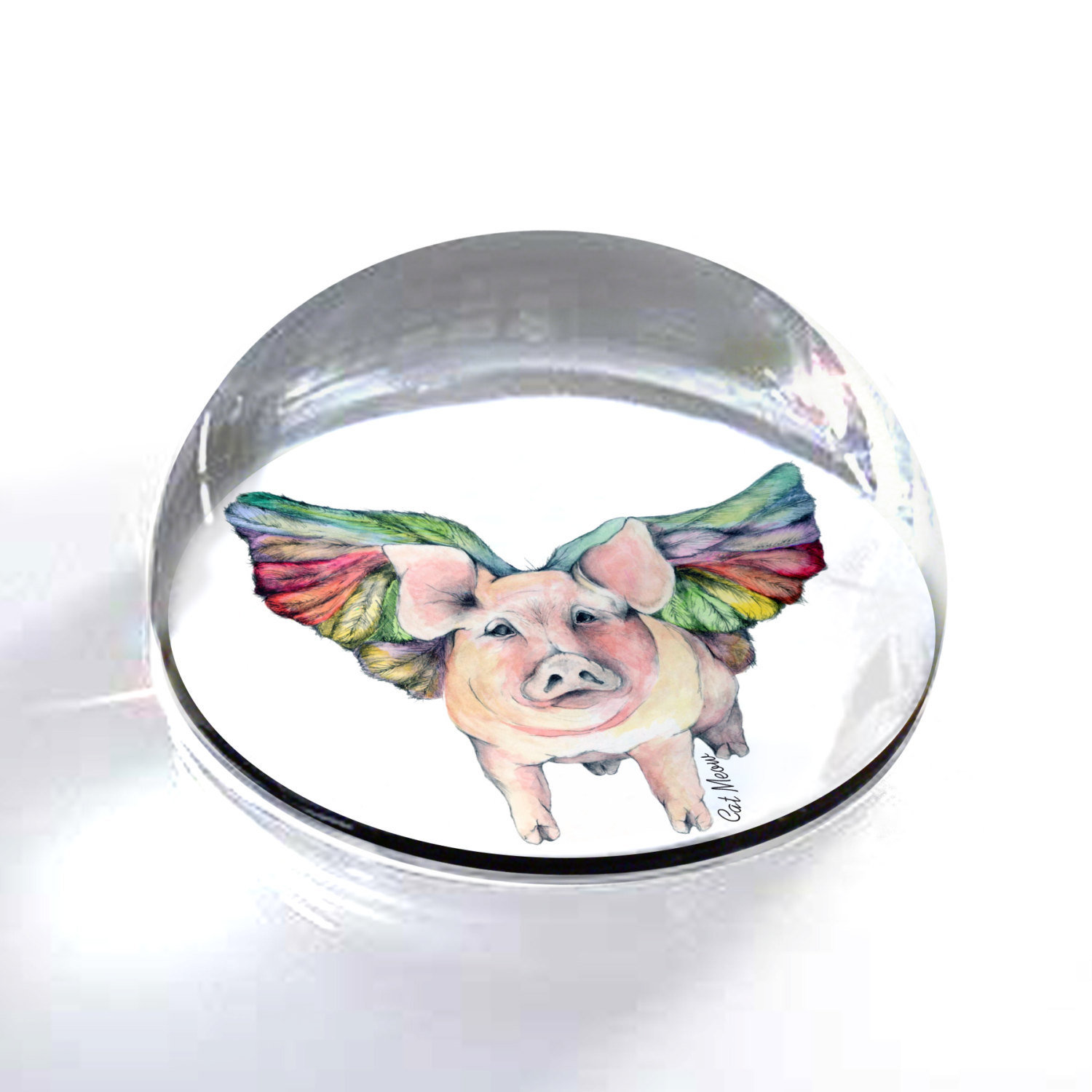 "Flying Pig Illustration Art Gift 2"" Crystal Dome Magnet or Paperweight"