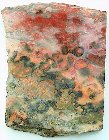 Leopard Skin Jasper 3 Gemstone Slab Cabbing Rough