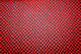 BLACK AND RED CHECK FROM IN THE BEGINNING FABRICS - 100% COTTON FABRICS - $7.91
