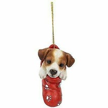 Jack Russell In Holiday Sock Decorative Holiday Festive Christmas Hangin... - $12.10