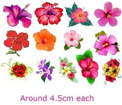 Hibiscus Flower   Temporary Tattoos  - $11.00