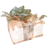 "Lighted Glass Block with 4"" White Border - Gold and Silver Pine Tree Ribbon - $34.60"