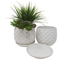 Textured Ceramic Planter Pot for Garden Flowers, Cactus Plant, Set of 2 - €17,71 EUR