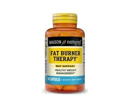 60 CAPSULES FAT BURNER THERAPY CHROMIUM PICOLINATE L-carnitine weight ma... - $9.85