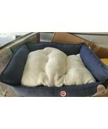 Boots & Barkley Rectangular Hi Wall Cuddler Dog Bed Medium New  - $19.59