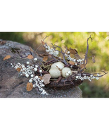 "New Spring Twig & Berry Bird Nest w/Eggs 12"" D Garden Decor  - $29.99"