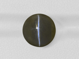 IGI Certified INDIA Chrysoberyl Cat's Eye 10.16 Cts Natural Untreated Round - $3,810.00
