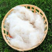 1KG KAPOK Natural Fiber Stuffing Doll Bear Toy Luxury pillow Zafu Pillow... - $3.95+