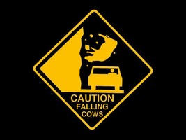FUNNY TSHIRT Caution Falling Cows T-Shirt Country Music Mens Kids Tee Shirt  - $11.99