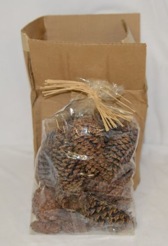 Goods Of The Woods 10105 Magical Color Pine Cones For Fires