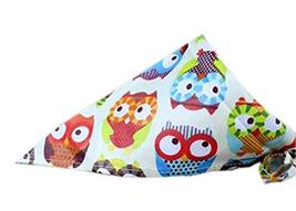 PANDA SUPERSTORE 2 Pieces Fashionable Cute Pets Triangle Scarves/Headscarf, Owl