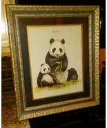 Vin. 1973 Giant PandasWildlife Artist Jim Oliver Signed FRAMED. Unframed... - $96.53