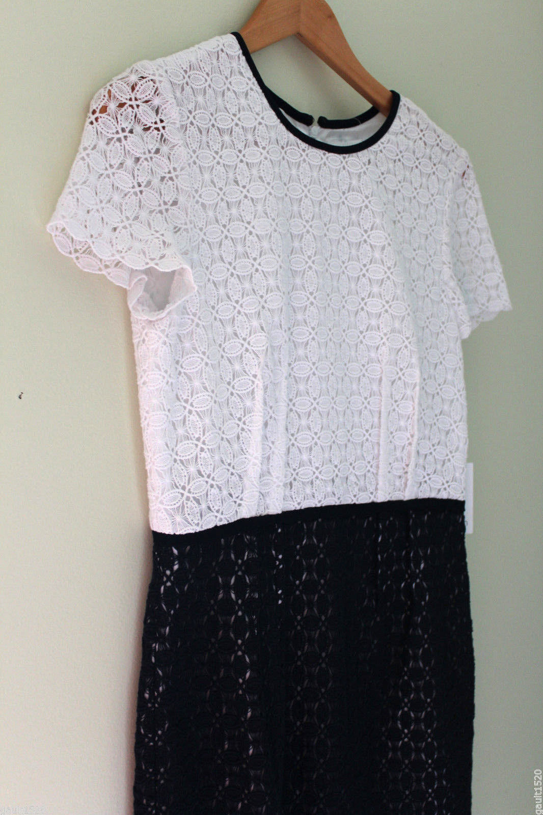 Primary image for NWT Calvin Klein Beautiful Crochet Knit White Twilight Blue Cap Sleeve Dress 6