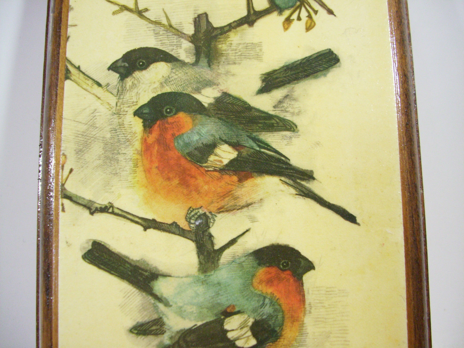 Pair MADS STAGE BIRD Print Plaques Wood Rustic Vintage Denmark Wall Hanging