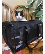 Pet Carrier Mesh Cat Dog Comfort Crimson Red Travel Bag Airline Bag With... - $39.59