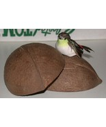 set of coconut halves with swallow - $2.97