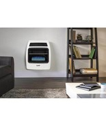 30000-BTU Wall or Floor Mount Indoor Natural Gas or Liquid Propane Vent-... - $699.00