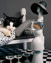 Checkerboard Cat - $14.95